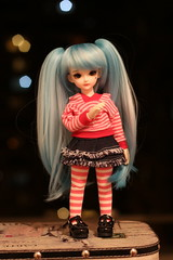 IMG_8204 (Ookami's sweet house) Tags: doll bjd customblythe obitsucustom classydoll dimdolllarina mystickids zinnadollmore