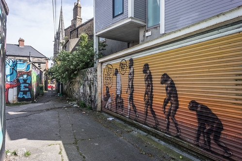 STREET ART IN DUBLIN - CABRA PARK URBAN GALLERY [A REALLY UGLY LANE]-104068