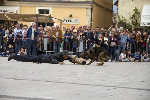 cinofili_a_norcia_in_piazza-049_da_raw