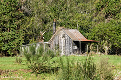 Sunny little cottage (leah-nz) Tags: newzealand house building architecture rural bush outdoor cottage nz derelict staglands