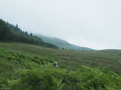 (jesse_the_ros) Tags: paircnaiseanta stirlin alba sruighlea lochlomond scotland trossachs lochlaomainn nationalpark troisichean gbr hike explore exploring nature photography hillwalking olympus july summer outdoor wandering robroyway landscaping hill grassland field 18mm