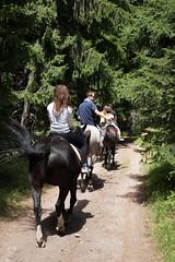 5D_IMG_6541 (Jeroen Kransen) Tags: bulgarije bulgaria    horse horseback equestrian horseriding paardrijden paardrit rodopen rhodopes