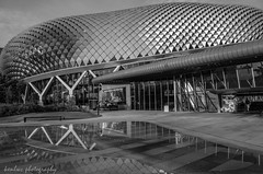 Esplanade - Theatres on the Bay (~kenlwc) Tags: city urban blackandwhite bw reflection water monochrome architecture mono bay blackwhite singapore theatre moo esplanade ricohgr theatres theatresonthebay kenleung kenlwc
