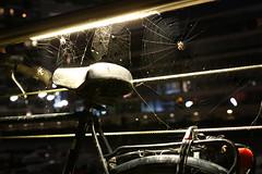 Spider at work (Mettwoosch) Tags: longexposure light bike bicycle night canon germany lens deutschland eos spider nacht outdoor spiderweb cologne kln spinne ef lichter spinnennetz langzeitbelichtung rheinauhafen 5dm3