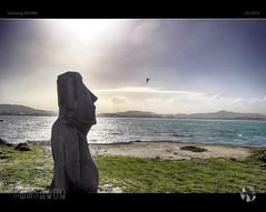 Moai Moment (tomraven) Tags: moai suns sky clouds water wellington lyallbay araveniamge tomraven bird silhouette horizon harbour q32016 samsung nx1000