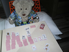 Payshunce (pefkosmad) Tags: bear travel vacation holiday ted game cute animal june toy cards island hotel vacances stuffed soft teddy hellas fluffy plush greece leisure greekislands pefkos griechenland rhodes patience solitaire pastime 2016 dodecanese finas pefki pefkoi tedricstudmuffin
