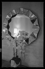 20160726POTD (Plonq) Tags: 2016yip hotel mirror lamp flowers wall bw blackwhite blackandwhite calgary alberta