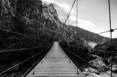 Puente Colgante del Gollizno (J Fuentes) Tags: bridge white black blanco rio ruta river puente blackwhite flickr y negro save granada niebla olivares colgante moclin gollizno velillos