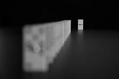 rebel (Jordi sureda) Tags: rebel different domino monochrome minimal bokeh blancoynegro blanc negre joc enfoque juego jordisureda game