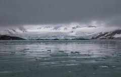 7-16-glacierfog-2896 (h.redpoll) Tags: fugelfjord norway svalbard driftice fog glacier