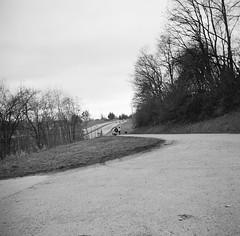 Family walk (Ursus Bear) Tags: yashica a tlr ilford xp2 super 400 medium format 120 6x6 coolscan 9000 ed monochrome bw blackwhite black white film monochromatic blackandwhite mono chrome analog outdoor ilfordxp2400super bwfp people highway walk road family woman dog animal kid children