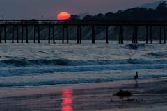 August Sunset at Haskell's Beach (beltz6) Tags: sunset twilight goleta haskellsbeach evening dusk sun pier beach shore seashore santabarbarachannel