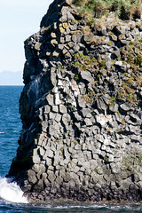 Rock Puzzle _4626 (hkoons) Tags: snaefellsnespeninsula arnarstapi country iceland birds cliff countryside feathers flight fly island landscape nest nests north outdoors wings