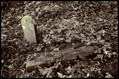 Here Lies- (Russell Young, F.R.P.S.) Tags: cemetery bw monochrome horseman horsemanvh 6x9 headstone overgrown abandoned rural virginia acros adox fx39
