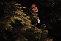Obscurity (Erin Bobbitt) Tags: wood trees portrait woman brown blur tree green leaves pine forest canon photography model woods sink michigan hide portraiture brunette blend