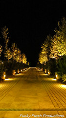 IMG_1098 (radical239) Tags: street night canon lights colours greece macedonia thessaloniki   sx220hs thessalonikinightlife