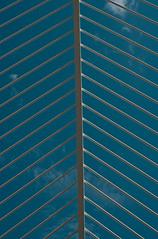 131 (kosmekosme) Tags: city blue skye valencia lines les architecture modern de spain arts line sciences ciutat ciències lumbracle cityofartsandsciences ciutatdelesartsilesciències