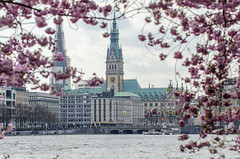 Springtime in my hometown Hamburg, Germany (gerckens.photo - hamburg) Tags: cruise winter summer wallpaper copyright moon lighthouse lake holiday hot love wet public water fountain beauty digital germany print freedom design big nice nikon flickr peace shine village time outdoor hometown background postcard hamburg sightseeing pussy young ivory illumination balticsea embassy queen special northsea cruiseship palais strong pearl nightview alster qm2 ebony elbe timeless springtime consulate hintergrund spectacle bille cruiseliner ingmar fulmoon mary2 blueport placetobe d7100 d7000 cruisedays gerckens gerckensphoto