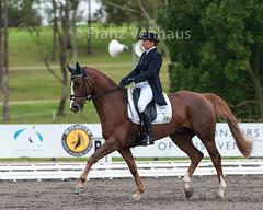 150501_2015_SydneyIHT_244.jpg (FranzVenhaus) Tags: horses sydney australia event nsw aus equestrian dressage eventing