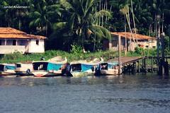 os Barqueiro (Jardel Anderson) Tags: barco anderson par jardel moju brasilemimagens