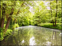 20150523-79 (sulamith.sallmann) Tags: reflection berlin nature water germany buch landscape outside deutschland countryside spring wasser europa seasons time jahreszeit jahreszeiten natur bach waters kanal reflexion spiegelung deu channel springtime frhling landschaften pankow frhjahr gewsser wasserspiegelung frhlingszeit sulamithsallmann