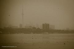 Toronto Old Town