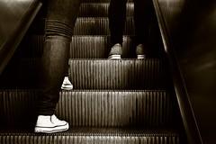Escalator (Claudia Spunticchia) Tags: rome feet up stairs way subway foot star shoes stair all legs metro leg escalator allstar