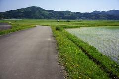 201505262985 (Gansan00) Tags: japan landscape sony  yamaguchi      ilce7r
