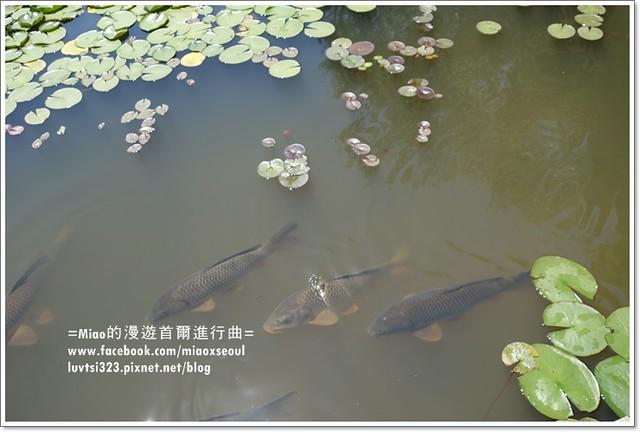 벽초지문화수목원11