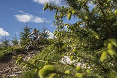 ews 14 (phunkt.com) Tags: world mountain love bike race scotland keith valentine glen trail peebles dh mtb series xc tress tweed enduro glentress innerleithen 2015 ews phunkt phunktcom tweedlove
