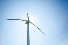 Giant backlight (F719D) Tags: sky sun tower backlight wind blades windturbine windfarm windpower windenergy windkraft vestas mhi v164