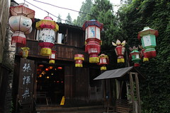 lanterns (Cynthia Turner) Tags: china red vines lanterns wuzhen mossy