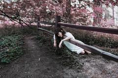 murmurs (~Lauren Parker) Tags: 52 5 weeks 2 52weeks fence purple leaning falling