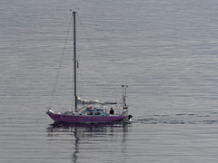 Darwind (Whidbey LVR) Tags: lyle rains lylerains olympus em5ii alaska cruise boat ketchikan