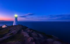 Cape Spear (Dwood Photography) Tags: ocean blue sunset lighthouse rock newfoundland rocks purple atlantic cape atlanticocean spear capespear 2016 dwoodphotography dwoodphotographycom