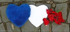 ohne Worte - sans mots (Jorbasa) Tags: france rose germany deutschland nice frankreich hessen heart attack geotag herz nizza sdfrankreich anschlag wetterau attentat jorbasa prayfornice