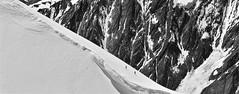 photo n&b de montagne en format panoramique  / le massif du mont-blanc vu du ciel (BOILLON CHRISTOPHE) Tags: photoboillonchristophe nikond4 massifdumontblanc chamonixmontblanc france lanscape montagne alpiniste