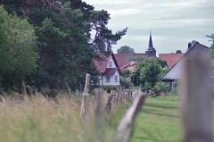 Zirchow Usedom (horschte68) Tags: zirchow inselusedom usedom dämmerung dusk balticsea ostsee fence weg zaun weide twilight