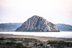 @IMG_4355 (bruce hull) Tags: sanfrancisco california aquarium coast highway chinatown pacific wharf whales coit emabacadero