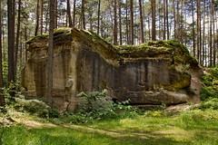 Historische Steinbrche Wernsbach (III) (Regina_Hoer) Tags: steinbruch historisch quarry franken franconia historical photography reginahoer sigma sd10 sandstein
