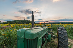 Johnny Dee (Strykapose) Tags: johnnydee newjersey sussex county sunset dusk farm sunflowers johndeere50 tractor vintage strykapose sony a7rii ef1635mmf28liiusm uwa clouds sussexcountysunflowermaze flowers johndeere crop augusta frankford