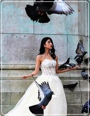 Paris: Lady with pigeons (Ioan BACIVAROV Photography) Tags: bacivarov ioanbacivarov photostream interesting beautiful wonderful wonderfulphoto woman women girl girls fille filles fata fete glamour sexy bird pigeon portrait summer fashion moda mode