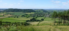 P1120662 (Steeple Ducks) Tags: combe hatch polden hill somerset levels view butterflies compton dundon