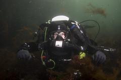 20160803-Eyemouth15 (Dacmirc) Tags: eyemouth diving ukdiving rebreather