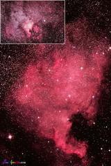CYGNUS C NORTH AMERICAN NEB TELEVUE 2016 - Copy - Copy (AstroSocSA) Tags: nebula supernovaremnant