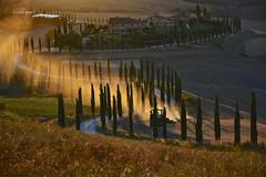 Working on friday evening. (Antonio Cinotti ) Tags: landscape paesaggio toscana tuscany italy italia siena hills colline campagnatoscana cretesenesi asciano nikond7100 nikon d7100 rollinghills nikon1685 cypress baccoleno johndeere tractor sunset tramonto trattore cipressi