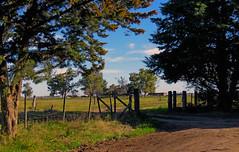 La tranquera. (jagar41_ Juan Antonio) Tags: campo tranquera puerta arboles imagendecampo