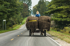 Amish Horse-drawn Wagon on Road in Central Michiga (Lee Rentz) Tags: amish america bales boy centralmichigan community farm hay highway horsedrawn market mecostacounty michigan northamerica road round rural stanwood transport usa wagon