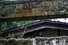 Verlassener Tempel (Henninger✔) Tags: green grau koyasan moos tempel