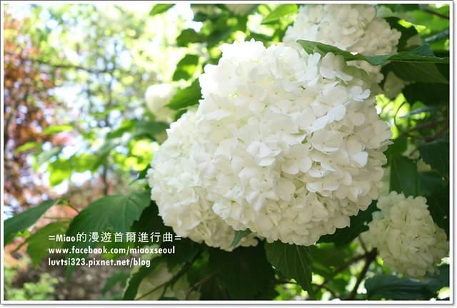 벽초지문화수목원26